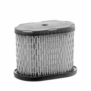 Air Filter for Briggs & Stratton